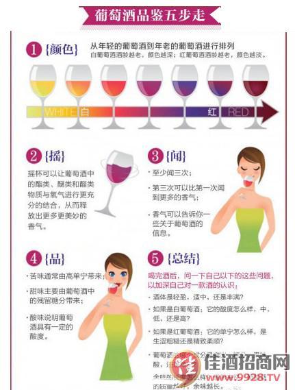 葡萄酒品鉴的五步(图)