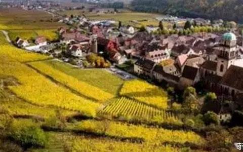 法国葡萄酒产区知识点之很像德国的阿尔萨斯
