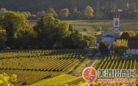 波尔多的葡萄酒为什么大部分都是混酿?