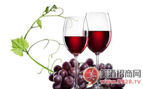 奔富克鲁斯葡萄酒为您讲述红酒的饮用方法