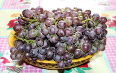 注意:自制葡萄酒危害自身健康