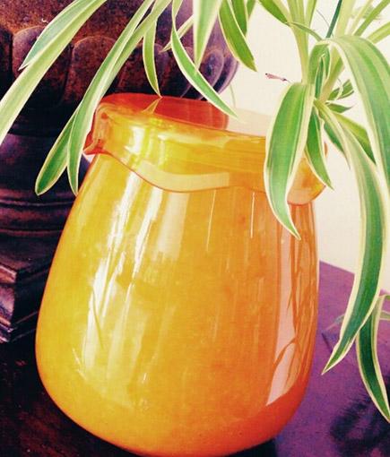 在家如何自制金桔果酒?