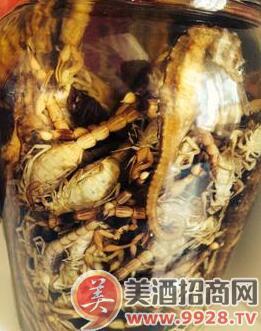 玛卡-蝎子酒_活蝎子泡酒的方法