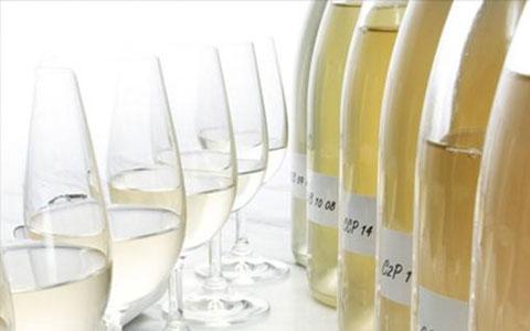 一分钟了解香槟酿酒工艺传统法