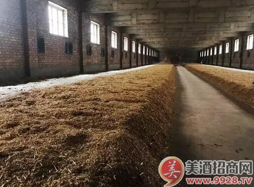 白酒酿造之地缸发酵