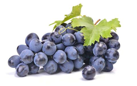酿酒原料之葡萄