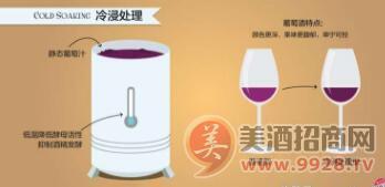 影响葡萄酒风味的6大酿酒工艺