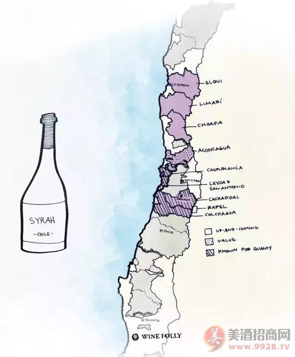 酿酒原料:智利的黑比诺