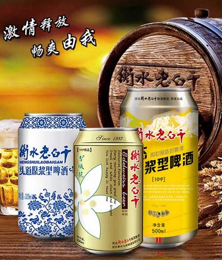 [广告]衡水老白干啤酒 适合大中小各级代理商