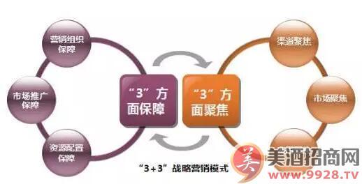 """""""3+3""""战略营销模式"""