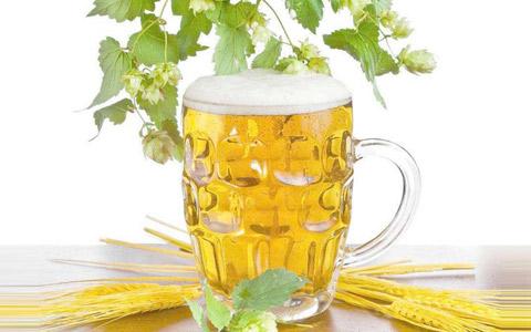 厦门自贸区从法国贸易进口啤酒金额激增163%