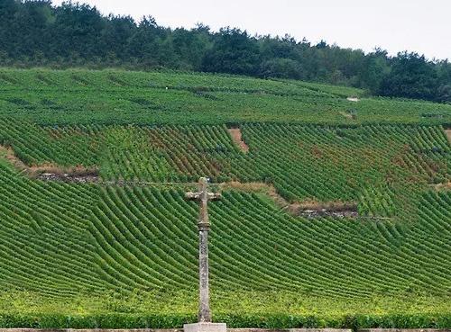 勃艮第名庄罗曼尼康帝的酿酒师即将退休