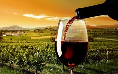 进口葡萄酒VS国产葡萄酒 市场争夺战升温