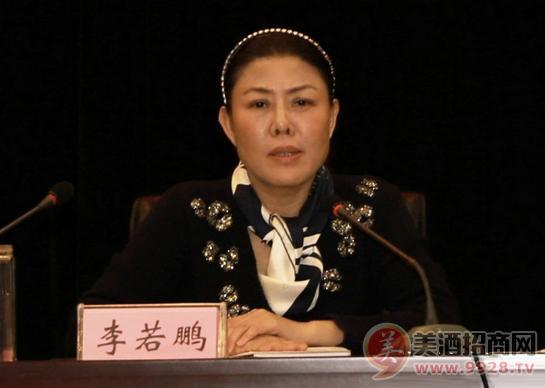 李若鹏副参加会议并讲话