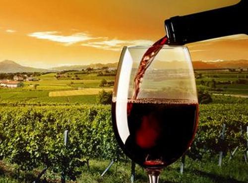 上海进口中高端葡萄酒有望嫁接追溯技术