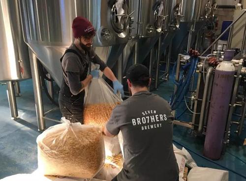 废弃的玉米片酿造的啤酒你喝过吗?