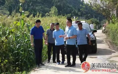 茅台集团副总经理杨建军率队到茅坝镇调研