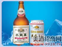 12ºP燕京王啤酒