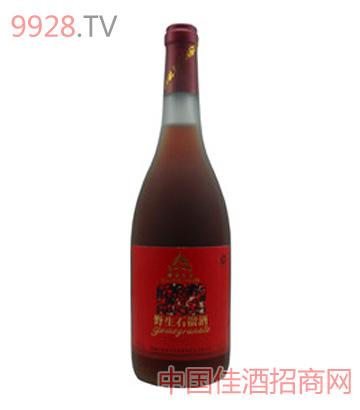 楼兰公主野生石榴酒