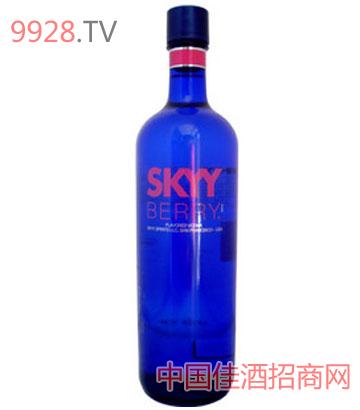 深蓝伏特加酒