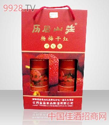 杨梅酒-时尚版礼盒装历居山庄杨梅干红葡萄酒
