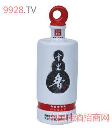 陶瓷酒瓶YDS0040