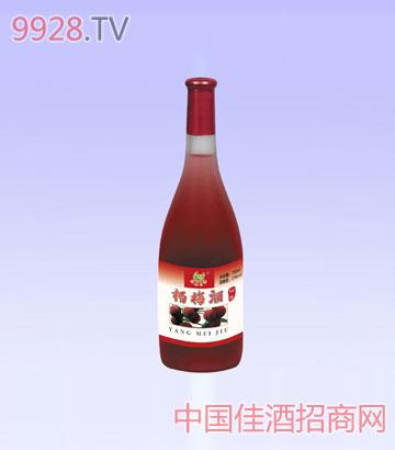 仙居生态杨梅酒精酿