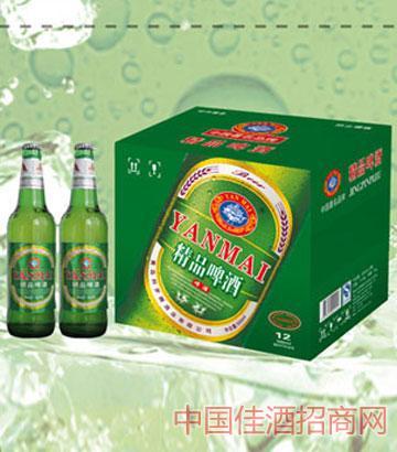 精品啤酒500mlx12