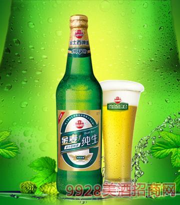 金士百金麦纯生啤酒