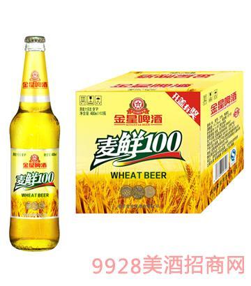 金星啤酒麦鲜100 480ml