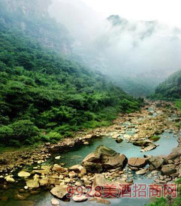 洞酿洞藏酒水源源自从未被污染的赤水河上游的分支流水系