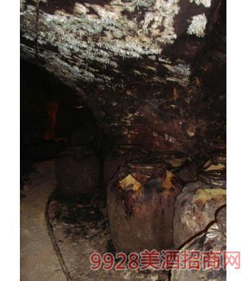 龟仙洞内四壁长满了微生物菌群酒