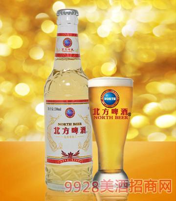 330ml8度北方佳人啤酒白瓶