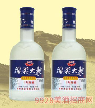 20绵柔大曲十年陈酿450mlx12酒