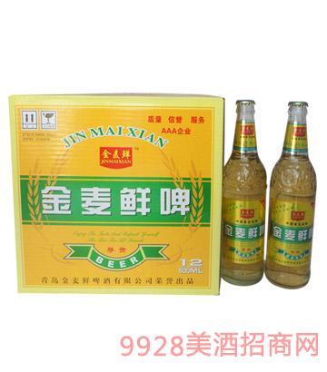 500ml金麦鲜啤尊贵8°P-1X12箱装啤酒