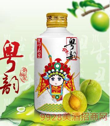 粤韵青梅酒