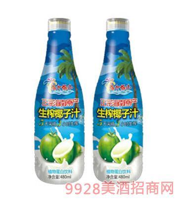椰大椰小生榨椰子汁480ml瓶装