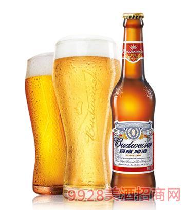 百威啤酒国产瓶装330ml