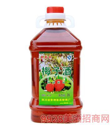 果果黄梅子酒2L