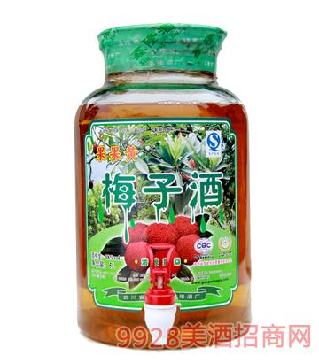 18度果果黄梅子酒5L