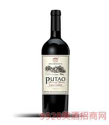 葡萄庄园赤霞珠干红葡萄酒庄园金樽