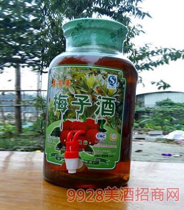 5升梅子酒