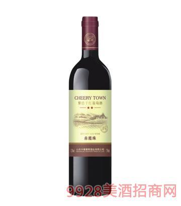 紫邑赤霞珠干红葡萄酒