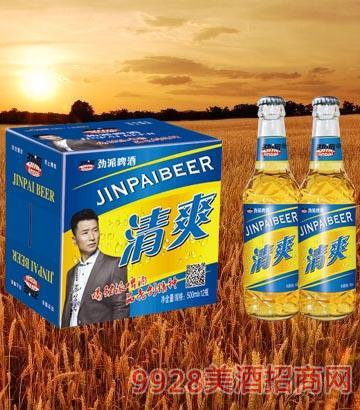 10°P劲派清爽啤酒500ml×12瓶