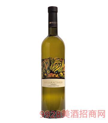 太阳花法兰娜干白葡萄酒
