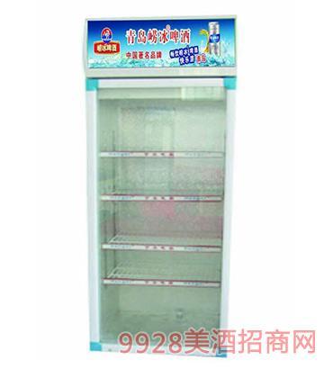 促销品系列之冰柜