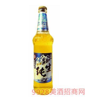 金星啤酒冰点纯生510ml×12