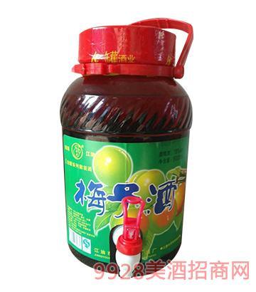 诗乡宴酒梅子酒5000ml
