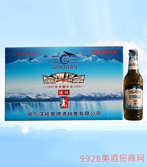 桂泉啤酒冰纯啤酒318mlX24