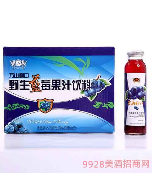 内蒙古野生蓝莓果粒果汁(20瓶)